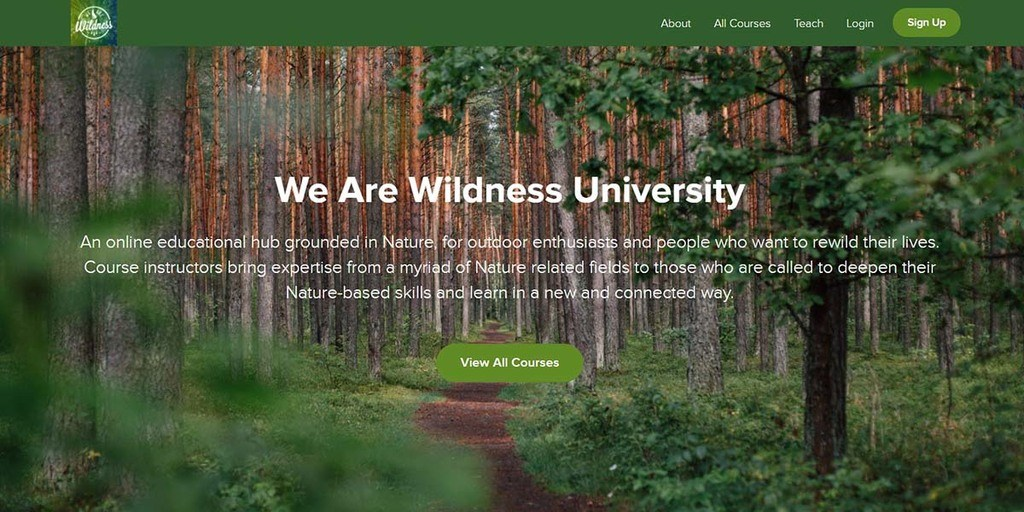 Teachable online course We Are Wildness University