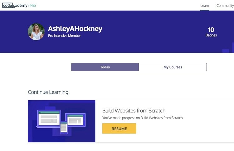 codeacademy dashboard
