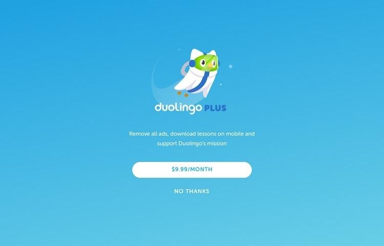duolingo plus courses